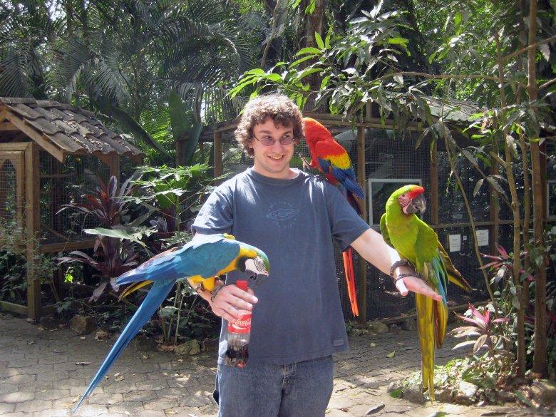 Mountain Bird Park, Honduras