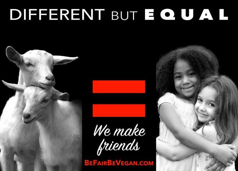 BE FAIR BEVEGAN - wegańska kampania billboardowa na Time Squere.  Inne, a jednak takie same jak my!