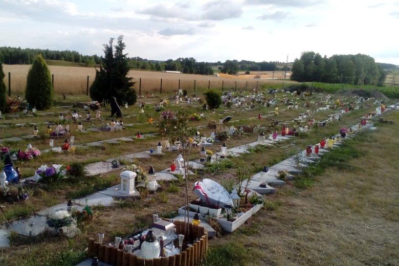 Co zrobić z psem lub kotem po jego śmierci? Większość właścicieli decyduje się na utylizację. Niektórzy wybierają pochówek na specjalnym cmentarzu.