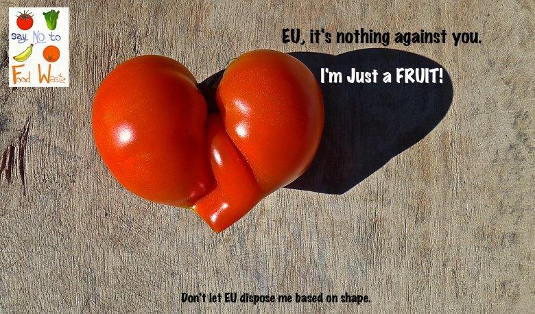 Taki pomidor nie jest dopuszczony do rynku unijnego z powodu swojej urody.