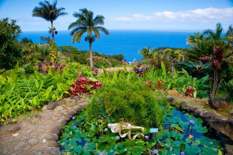 [url=http://shutr.bz/1nVqcVG] Ogród Eden na Maui [/url]