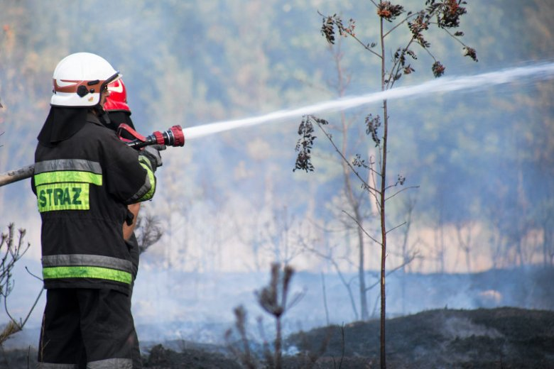 Na Mazowszu pożar strawił conajmniej 40 ha lasu.