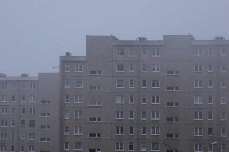 Znalezione obrazy dla zapytania bloki królikowski