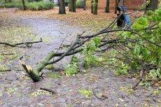 Orkan Grzegorz nad Wrocławiem.