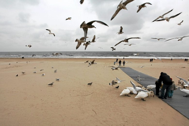 W tym roku plaża z pewnością będzie oblegana przez polskich turystów