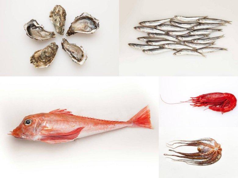 Owoce morza i ryby od Fish lovers