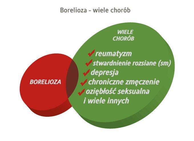borelioza a choroby