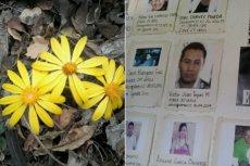 W Meksyku poważnym problemem są tzw. wymuszone zaginięcia.