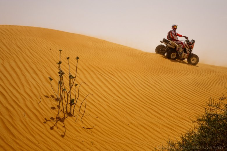 Pustynia w Emiratach Arabskich