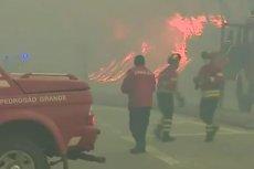 Dramatyczne doniesienia z Portugalii. Ponad 60 osób zginęło w pożarze. A to dopiero wstępny bilans.