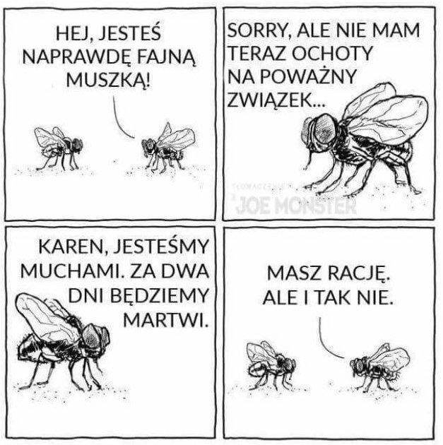 Perypetie Karen