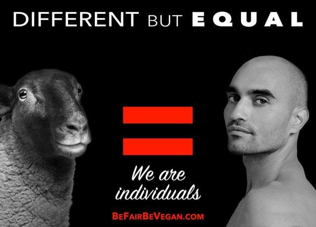 """""""Different but equal"""" - Wegańska kampania billboardowa na Time Squere, sierpień-wrzesień 2016"""