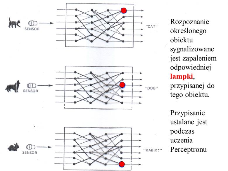 Sposób sygnalizowania decyzji podejmowanych przez Peceptron