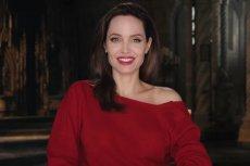 Angelina Jolie walczy w sądzie z Bradem Pittem.