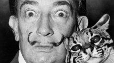 Salvador Dali i jego ocelot Babou.