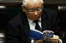 """Jarosław Kaczyński czytający """"Atlas kotów"""" był piątkowym """"hitem internetów"""". Polacy pisali o nim częściej niż o sądach czy zakazie handlu w niedziele."""