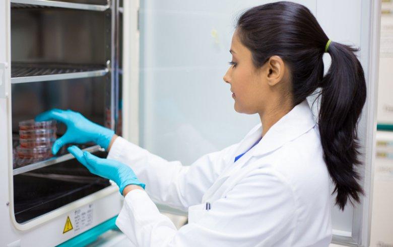 PiS chce zakazu wykonywania zawodu przez pięć lat dla lekarzy wykonujących in vitro