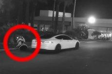Scenę potrącenia robota przez autonomiczny samochód możemy zobaczyć w internecie