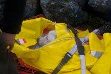 Niesamowita akcja ratunkowa. Ten pies spędził prawie miesiąc uwięziony w Karkonoszach.