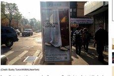 Plakat diecezji brooklińskiej przekonuje, że Jezus Chrystus był hipsterem