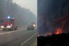 Pożary w Rosji strawiły 3000 kilometrów kwadratowych lasów. Zginęły 54 osoby. W akcji gaśniczej Rosjanom też pomagali Polacy.
