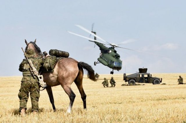 Na pokazie były pojazdy piechoty, śmigłowce i ... kawaleria.
