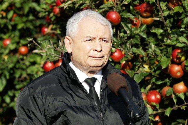 """Prezes PiS Jarosław Kaczyński okrzyknął się spadkobiercą """"witosowskiej tradycji PSL""""."""