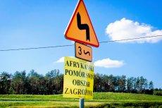 Płot na granicy ma powstrzymać rozprzestrzenianie się ASF.
