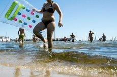 Sinice opanowały trójmiejskie kąpieliska. Kąpiel w takich warunkach jest niebezpieczna dla zdrowia.