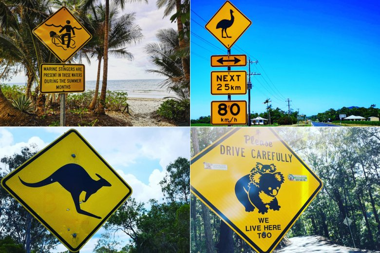 Przy australijskich drogach można znaleźć sporo nietypowych z naszego punktu widzenia znaków drogowych.