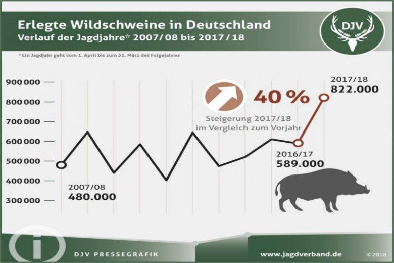 Tak przedstawia się odstrzał dzików w Niemczech.