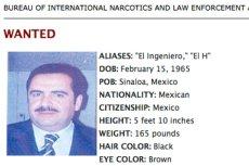 Hector Beltran Leyva został zatrzymany w mieście San Miguel de Allende. Barona narkotykowego poszukiwał m.in. amerykański Departament Stanu