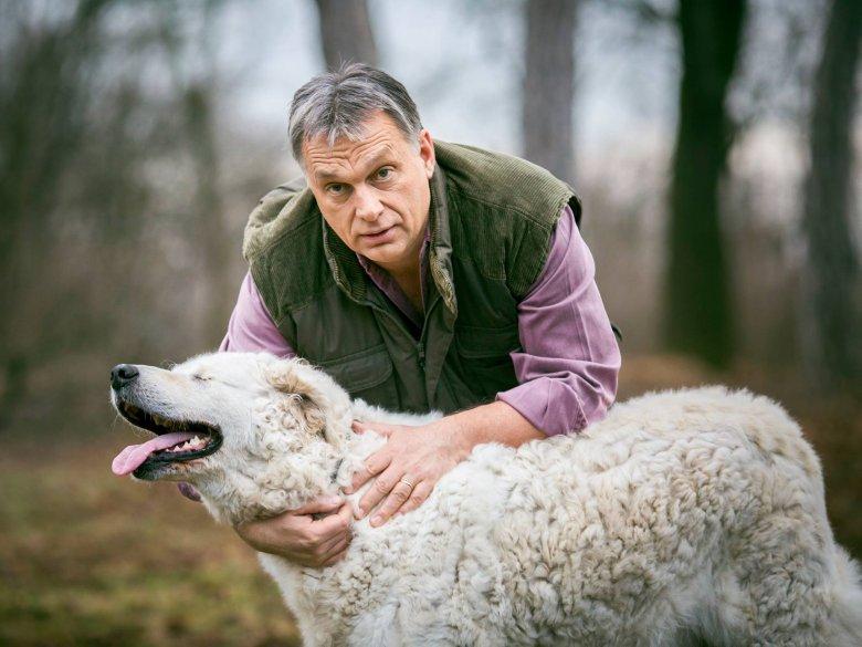 Viktor Orbán  z psem Narcyzem