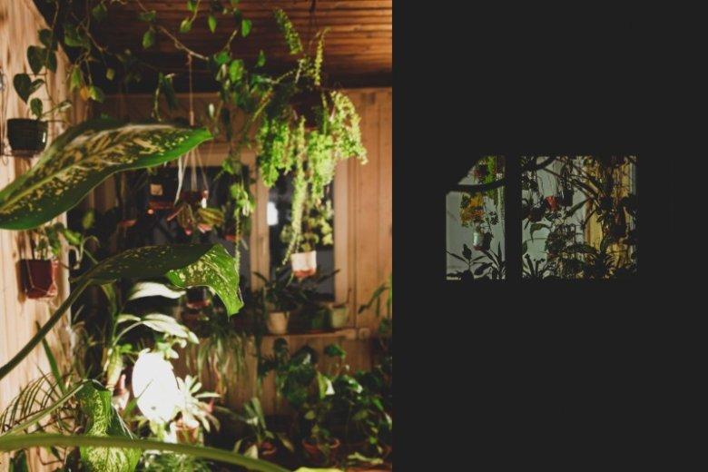 """Solatorium to magiczny ogród w samym środku miasta. Warto tu wpaść po dawkę energii i """"słońca"""""""