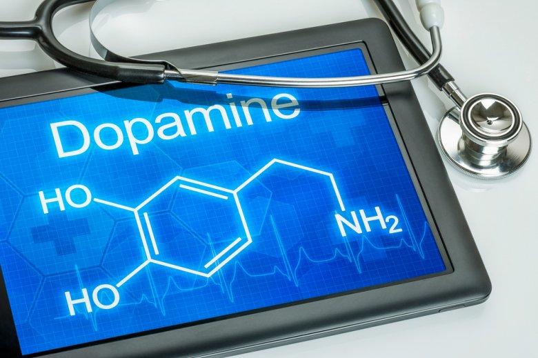 [url=http://tinyurl.com/oajg5rh]Dopamina[/url] zostałą odkryta przez przypadek.