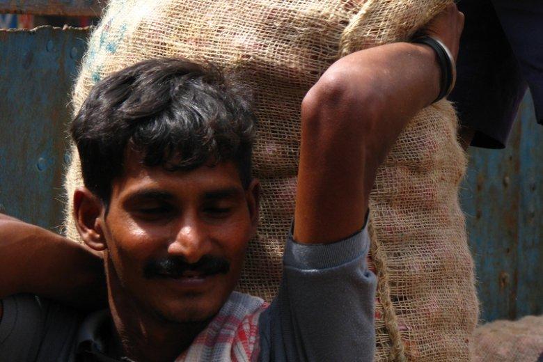 W Indiach zapotrzebowanie na cebulę jest ogromne