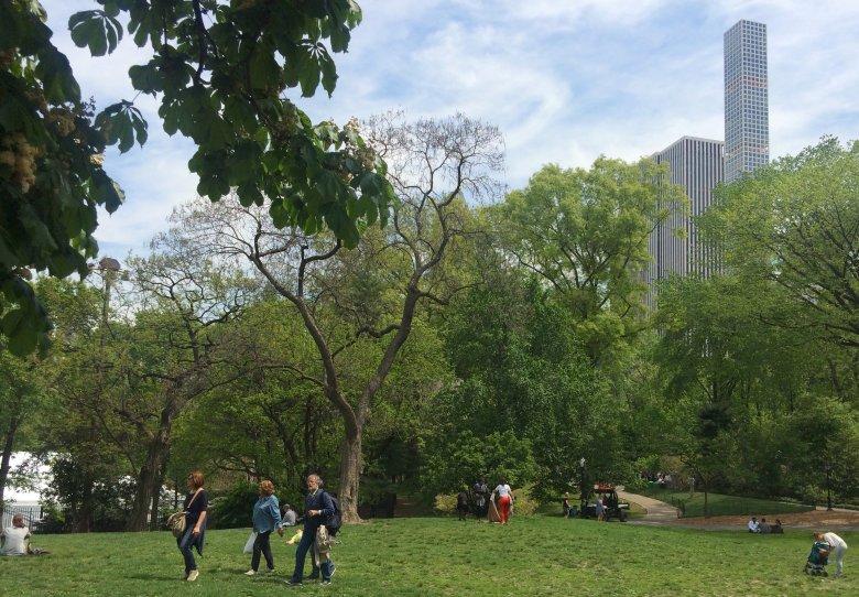 Spacer po Central Parku, 2016