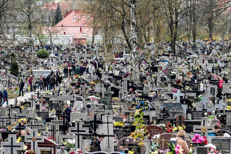 Co roku na różnych cmentarzach w Polsce zdarzają się kradzieże kwiatów i zniczy. Na zdjęciu, Cmentarz Nowy w Kielcach (Zdjęcie ilustracyjne).