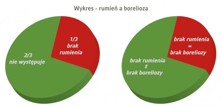 borelioza :  rumień a kleszcz  oraz rumień a borelioza