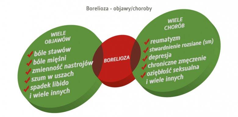borelioza a objawy i choroby
