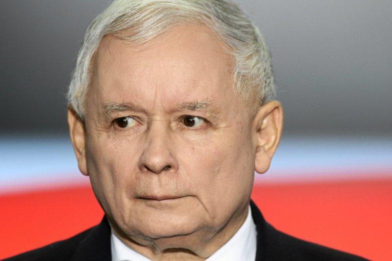 Cały czas politycy PiS-u powtarzają, że to Jarosław Kaczyński jest pomysłodawcą programu 500+, dzięki któremu zdobyli władzę.