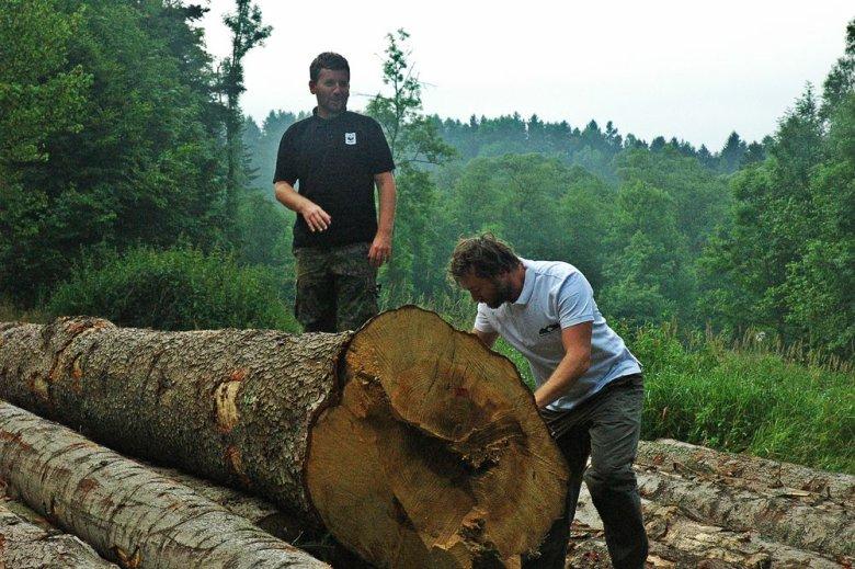 Z projektowanego Turnickiego Parku Narodowego wyjeżdża każdego dnia średnio sześć 40-tonowych ciężarówek z drewnem, wśród nich są drzewa spełniające kryteria drzew pomnikowych.