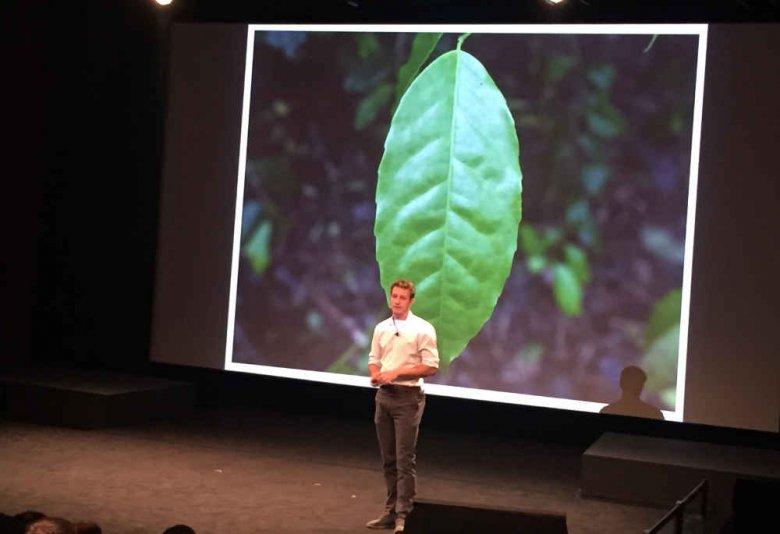 Jeden liść zmienił życie tego człowieka. Biznesowa historia Tylera Gage'a i firmy Runa