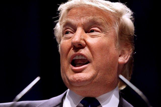Donald Trump ma mieć polskie korzenie. Prezydent USA ma być potomkiem królowej Jadwigi Żagańskiej.