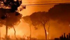 Płoną lasy w Hiszpanii