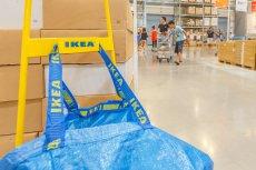 Kultowa torba z Ikei za... 125 dolarów. Unowocześniona i designerska.