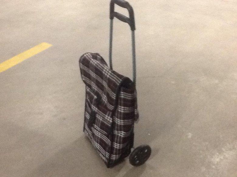 Rzekoma torba Burberry