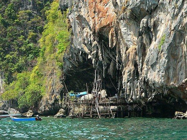 Rusztowania w Jaskini Wikingów, Maya Bay/ Koh Phi Phi Lay.
