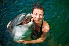 """W Indiach [url=http://shutr.bz/18oouqm]delfiny[/url] uzyskały niedawno status """"Non-Human Persons"""". Nie mogą być więzione i pokazywane ku rozrywce ludzi w delfinariach."""