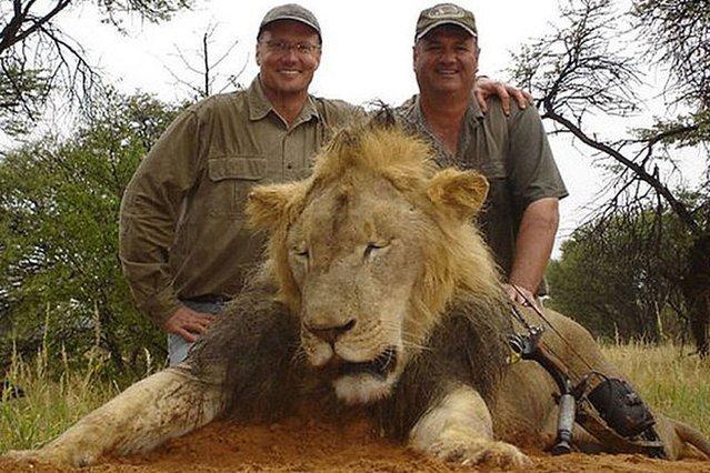 Walt Palmer (po lewej) - dentysta z USA, który zastrzelił lwa Cecila.